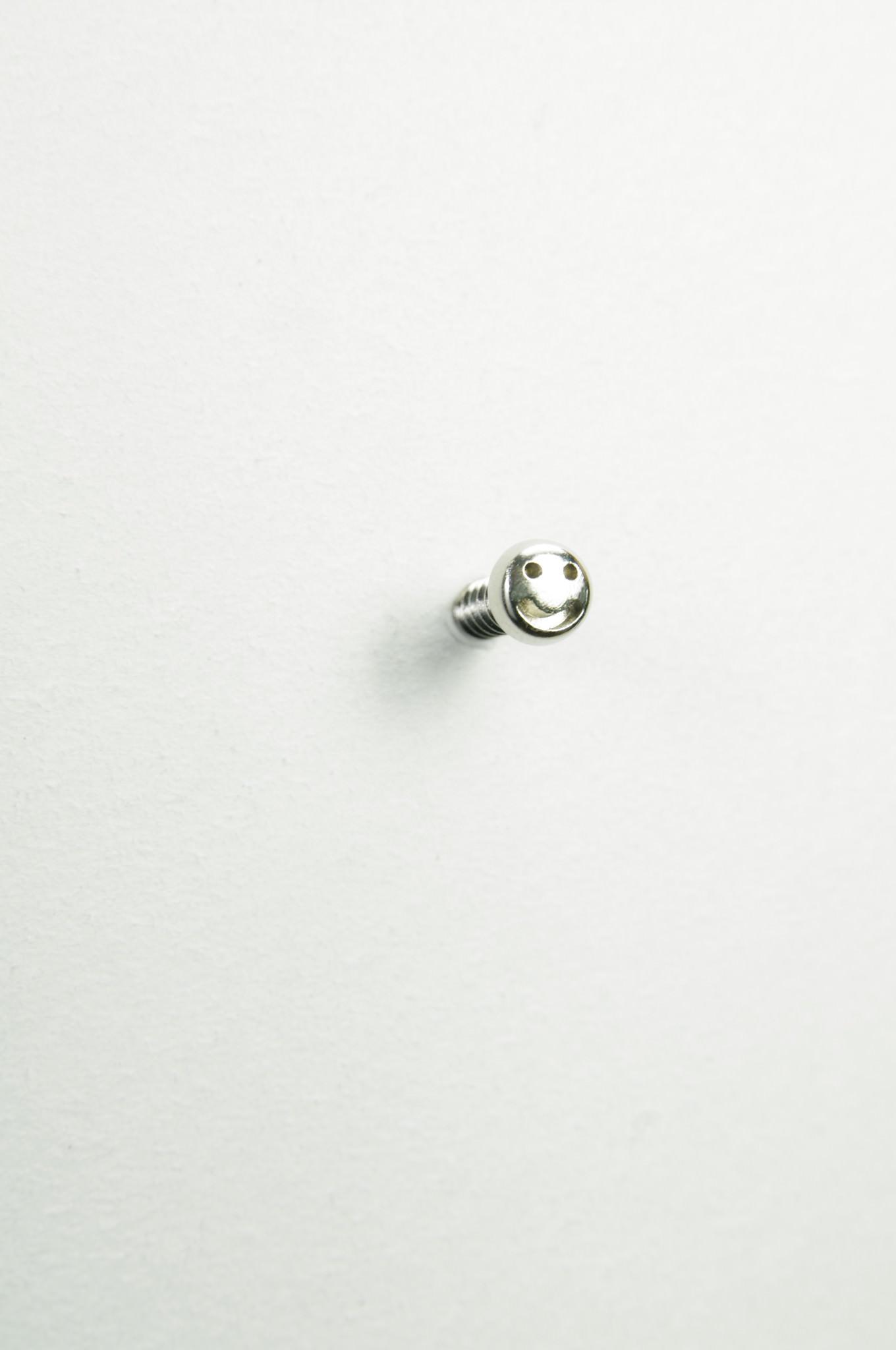 screw_13